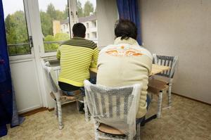 I torsdags kom syrierna Mohammad och Mohammad till Mellansel. De bor tillsammans med en landsman i en rymlig lägenhet, som ännu inte innehåller mycket mer än sängar, bord och några stolar.