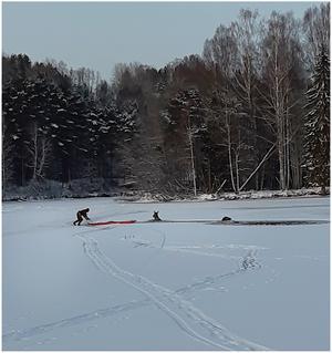 Räddningstjänsten räddar en älg och jakthund upp ur isvak vid Faxälvens mynning. Foto: Räddningstjänsten