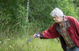 Kerstin Ekman lyfter värdet av att kunna namn på växter. Bild: TT