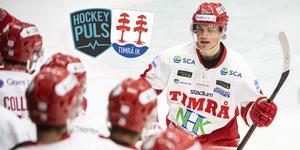 Nielsen under sin första A-lagssäsong. Foto: Bildbyrån.