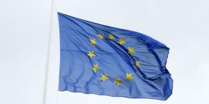 Varför ska vi vara med i EU? undrar signaturen.