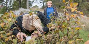 Maj-Britt Vengemyr i Kängsta fick besök av Smohf:s miljöinspektörer.