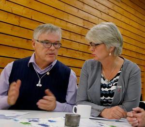 Moderaten Christer Siwertsson och socialdemokraten Ann-Marie Johansson är  politiker i regionens toppskikt.