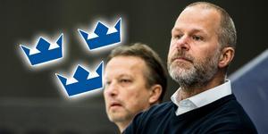 Markus Åkerblom sägs vara huvudkandidat till en av tjänsterna som assisterande förbundskapten. Bild: Petter Arvidsson/Bildbyrån