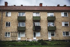 """Enligt Christian Kirkman-Möller har man renoverat fastighetsbeståndet för 31 miljoner kronor de senaste fem åren. """"Vi har spenderat mer pengar på fem år än tidigare ägarna och Avesta Kommun  gjort tillsammans under de föregående 25 åren, säger han."""