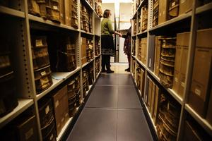 Landsarkivet visar sina arkiv på lördag.