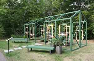 Pelargoniens idéträdgård