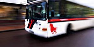 """""""Förbudsskylten är försvunnen sedan länge, och kvar sitter bara """"Gäller ej buss i linjetrafik"""". Foto: Klockar Mattias Nääs"""