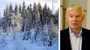 Arvid Callans är den privatperson som äger mest skog i hela Västernorrland.