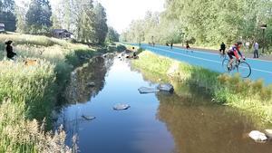 En snabbcykelväg längs vattnet till Skultuna är en idé.                                       Bild: White arkitekter