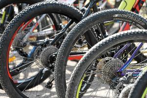 Misstänkta cykeltjuvar häktades på onsdagen.