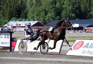 Alf Jonsson-tränade Ängsborken sätter nytt svenskt rekord tillsammans med Jimmy Jonsson. Bild: Mats Persson