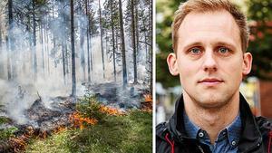 Bilden är ett montage. Foto: Niklas Hagman / Elin Turpeinen