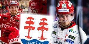 Hampus Larsson spelar i snitt 20.13 minuter per match. Mest i Timrå. Foto: Bildbyrån.