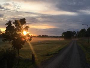 Bilden är tagen i Komyra,Ockelbo under en kvällsutflykt. Foto: Karin Larsson