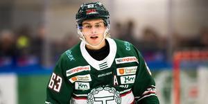 Daniel Öhrn sägs vara ett namn för VIK. Bild: Magnus Lejhall/Bildbyrån