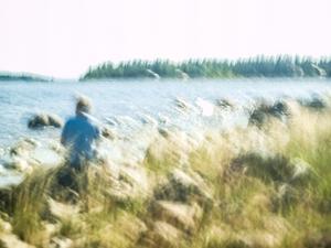 Havet, vinden fåglarna det är en Lisa för själen Foto: Stefan Hessman