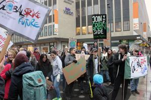 Miljöpartiets ungdomsförbund Grön Ungdom deltog i fredagens klimatmanifestation i Västerås.