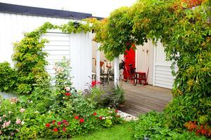 Trädgården är Birgittas nöje.