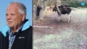 Leif Gisslen är en van jägare. Varje höst i 40 år har han jagat i länet.