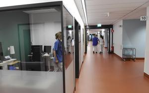 Genrebild sjukhus. Foto: Henrik Montgomery / TT