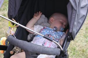 Dean, 1, Screw Loose Cruisers yngste medlem, sover sött i skuggan.