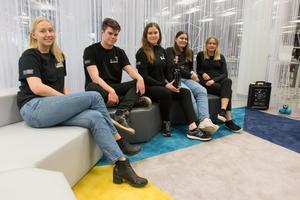 Emilia Svennblad, Filip Lindberg, Cornelia Wilhelmsson, Caroline Jansson och Magdalena Sahakangas driver UF-företaget Lucerna UF.