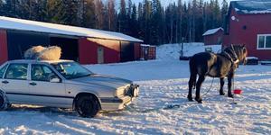 Nordsvensken Älvan fick agera bärgare under tisdagsmorgonen. Foto: Privat