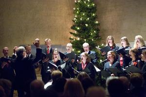 Octava sjunger i Alsen och Sveg i helgen.
