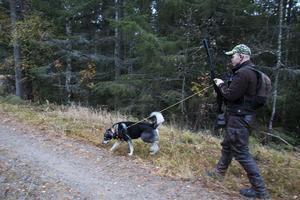 Oskar Åsåker har tränat länge med sina hundar, för att de ska vara i form till älgjakten.