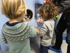 Maxtaxan innebär att föräldrar med låga inkomster betalar en högre andel av sin lön för att ha barnen på förskola än vad höginkomsttagare gör. Foto: Gorm Kallestad/TT