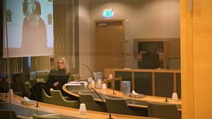 Den häktade 16-åringen och advokat Charlotte Rudebeck. På skärmen syns åklagare Sophia Berling som var med under häktningsförhandlingen via länk.