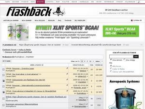 Skärmdump från forumet Flashback vars medlemsregister läckt ut.