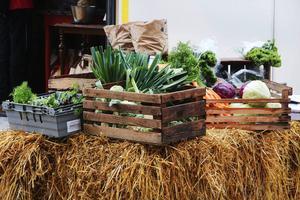 Nyskördade grönsaker erbjuds till försäljning på höstmarknaden