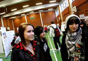 Att välja till gymnasiet efter 9:an är aktuellt för Maja Mixter, Lina Wilhelmsson och Linnea Hjulström som besökte öppet hus på Palmcrantzskolan i går.  Foto: Henrik Flygare