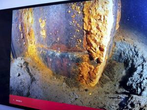 Bilderna som visar hur brostöden angripits av bakterien.