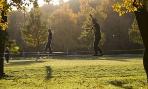 En varudeklaration över ledarsidans värderingar och vad vår linje står för