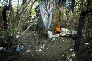 Inne i buskaget har familjen ett läger med två mindre tält och sina kläder och förnödenheter. De säger att de inte blivit störda och inte känt sig oroliga över att sova här.