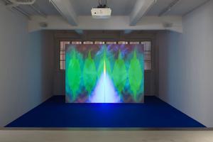 Största verket i utställningen är videoverket A Void som blandar mönster från olika kulturer med former som uppstår i synnerven när den återkopplar mellan hjärnan och näthinnan.