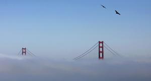 Bron inbäddad i dimma.