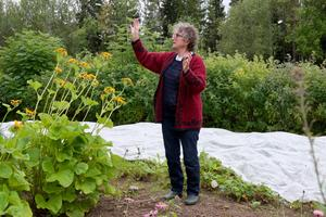 Helga Olsson guidar i sin högt belägna trädgård i Ytterberg. I det här landet blandas ätliga och vackra växter.