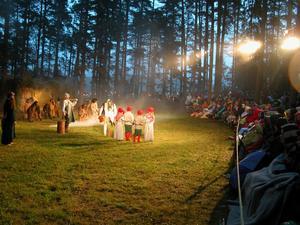 Färgstarkt. Tomtar, troll och älvor dansade i ett färgstarkt avslut av Trollbröllopet. Foto:Lovisa Svenn