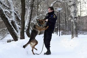 Länets färskaste hundekipage har redan gjort succé. Inom loppet av några veckor har schäfertiken Yatzy med föraren Daniel Vesterlund räddat tre människoliv.