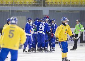 Finskt jubel under skrällmatchen i VM i Uljanovsk 2016, då Finland slog ut Sverige i semifinal.
