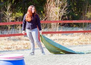 Kaylee van de Graaff försökte med hjälp av en presenning få uppmärksamhet från en av terapihästarna under en av övningarna som studentgruppen genomförde.