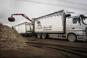 Ungefär tre lastbilslass flis om dagen blir det. Lastbilen är ännu ett led i kedjan från hyggesavfall till biobränsle.