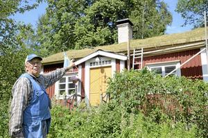 Torvteknik. Sven förklarar att man lägger två lager torv på taket, det första med jordsidan upp, och det andra med grässidan upp. Rötterna växer sedan samman och skapar ett extra tjockt lager med torv.