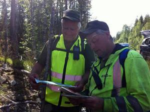 Sten-Erik Wågström och Mikael Forsberg arbetar tillsammans med ett tjugotal från hemvärnet i sökandet. Fotograf: Magdalena Prevéus