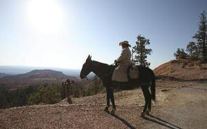 Man på hästrygg – högmodet i sin ursprungligaste form.FOTO:Ross D. Franklin