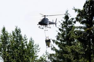 Redan under onsdagen går helikoptern upp och sprider grunalet med bekämpningsmedel vid Nedre Dalälven.